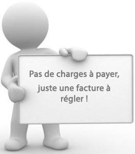 1jb0j-Bonhomme_panneau